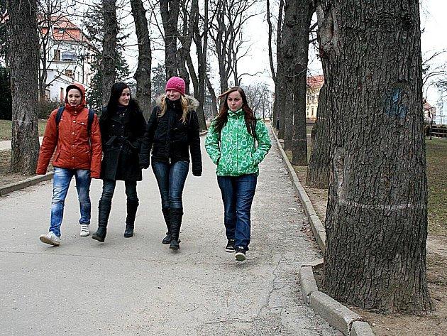 Městský park ve Znojmě - střední část už město nechalo vykácet.