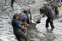 Rybáři vylovili Jejkal.