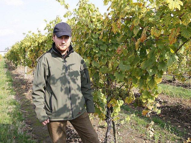 Michal Mikulenčák sbírá hrozny z vlastních vinic, které se rozkládají na dvou místech v Tasovicích na Starých vinohradech a v Jaroslavicích Pod zámeckou alejí. Víno vyrábí v rodinném sklípku ve Slupi.