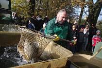 Tradiční vývlov rybníka Jejkala uspořádali v sobotu dopoledne správci u Vranova nad Dyjí. Podívat se na práci rybářů, ochutnat speciality či nakoupit čersté kapry přišlo několik stovek lidí.