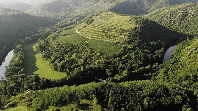 Vynikající Ryzlink rýnský i další odrůdy pěstují vinaři na kopci Šobes v meandru řeky Dyje na Znojemsku. Zájemci je mohou v místě ochutnat ve speciálním stánku. Místo si kvůli chráněné poloze oblíbila řada ohrožených druhů.