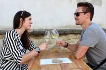 Pár na víně v Šatově.