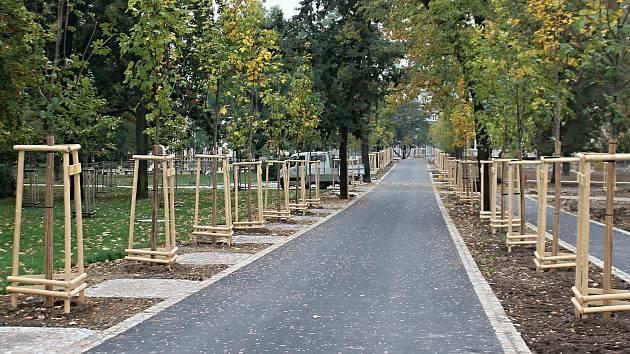 Za dva týdny bude znojemský Dolní park opět průchozí.