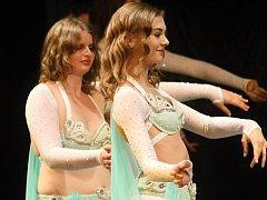 Šedesát žen a dívek roztančilo v sobotním odpoledni znojemské divadlo.