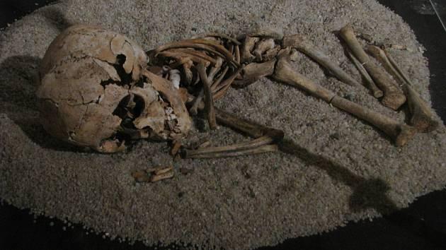 Výstava Život a smrt v mladší době kamenné