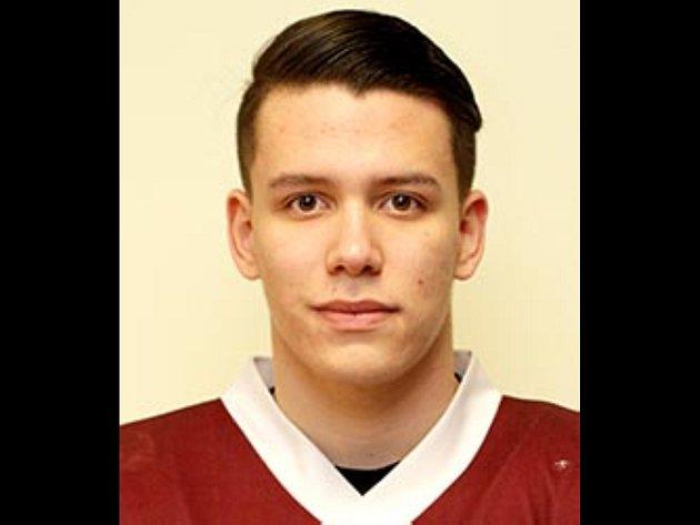 Hokejista Marek Györi.