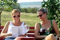 Pohoda při víně...