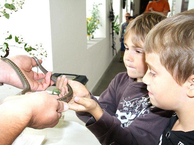 Děti ze znojemských základních škol v muzeu.