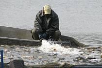 Rybníkáři začali s výlovem v Jaroslavicích
