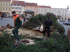 Silný vítr zlomil 30. listopadu nad ránem vánoční strom na znojemském Horním náměstí.