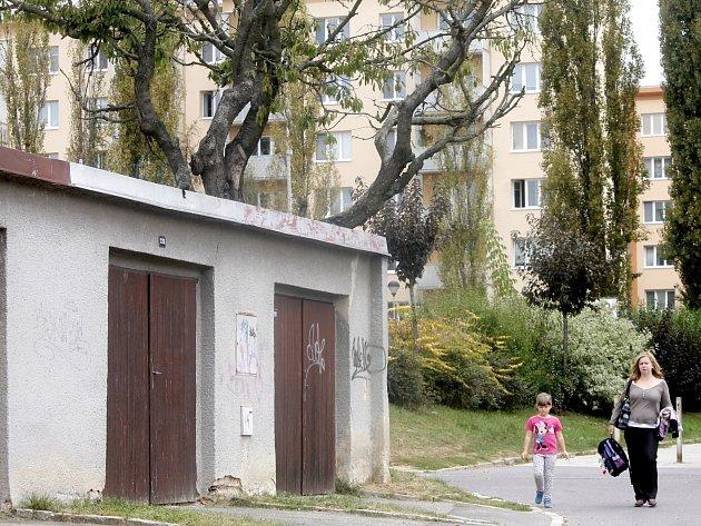 Silná suchá větev staré třešně ohrožuje chodce včetně školáků u Základní školy Pražská ve Znojmě.