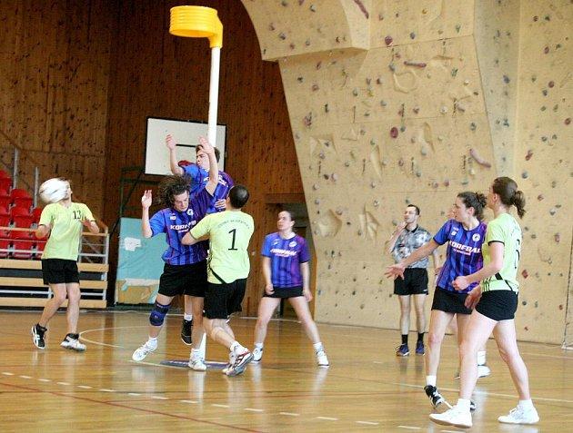 V sobotním duelu se na palubovce znojemské sportovní haly utkali Modří sloni s týmem KCC Sokol České Budějovice. Domácí prohráli 14:18