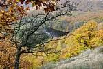 Národní park Podyjí, pohled na řeku Dyji z vyhlídky od vinice Šobes