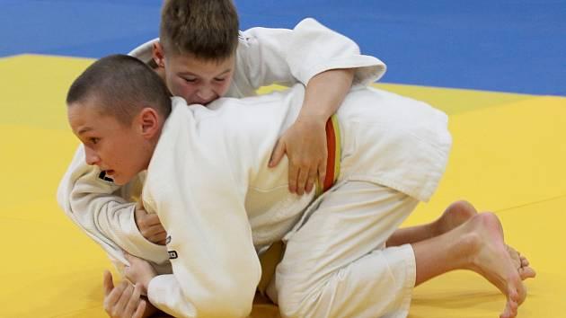 Ve Znojmě zápolili druhou listopadovou sobotu mladí judisté na třetím ročníku Gladork Cupu. Výtěžek ze startovného věnují organizátoři z Valetudo-RK Znojmo na podporu handicapovaného Lukáše Demla.