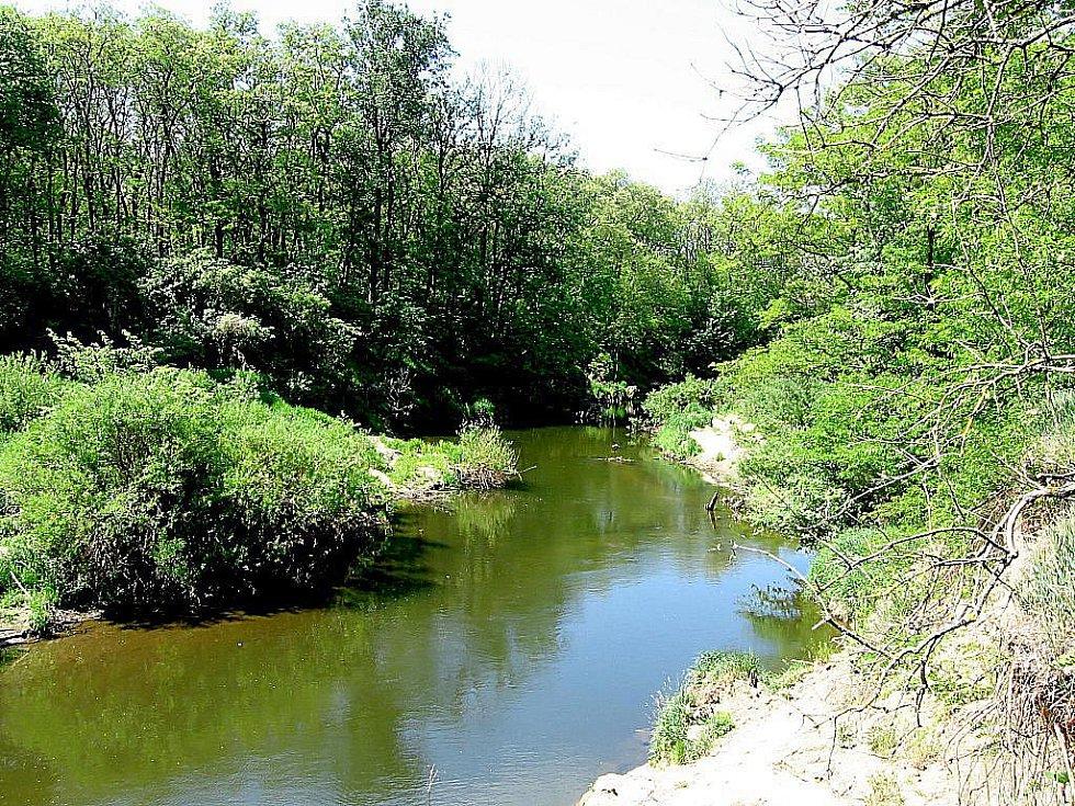 Údolí řeky Dyje - ilustrační foto.