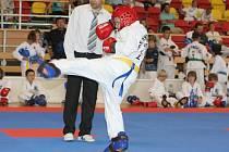 Mezinárodní turnaj v korejském bojovém umění Taekwon-do. Ilustrační fotografie.