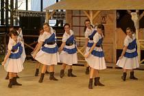 V sobotu se ve sportovní hale v Horním parku konalo Mistrovství republiky v country tancích.