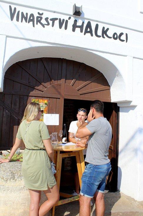 Šatovští vinaři vítali hosty ve svých sklípcích.