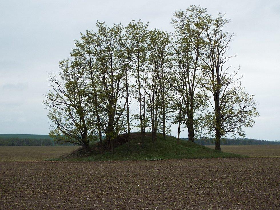 Řopík číslo 434 stojí necelý kilometr  severně od Chvalovic, asi 200 metrů vlevo od silnice E-59 směrem na Znojmo uvnitř zemědělského lánu.