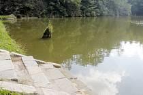Citonický rybník Skalka se dočká odbahnění a oprav.