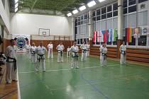 Mezinárodní výuka bojového umění So-San.