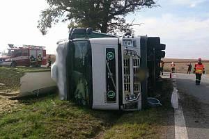 Kamion převážející dobytek havaroval. Několik zvířat zemřelo.