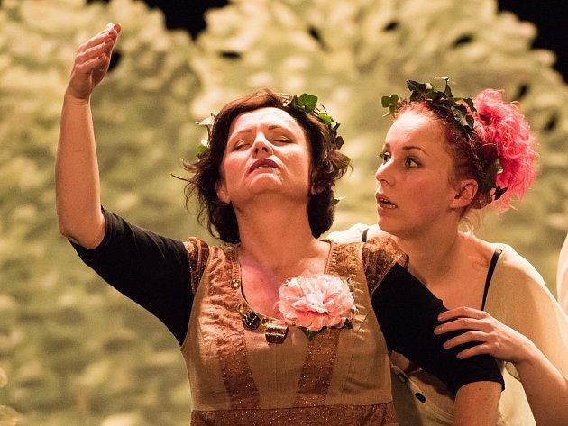 Na tři stovky diváků zavítalo na víkendovou přehlídku ochotnických divadel do Moravského Krumlova. K vidění bylo šest různých představení.
