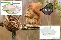 Z videa Národní park Podyjí s veverkou Čiperkou.
