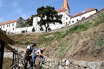 PŘÍPRAVNÉ PRÁCE. Dělníci začali minulý týden připravovat terasy pro výsadbu keřů vinné révy. Ještě letos na podzim tak vznikne pod chrámem svatého Mikuláše městská vinice. Víno z ní lidé poprvé ochutnají až v roce 2014.