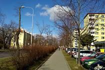 Téměř čtyři desítky lip po pravé straně uice Pražská ve směru na Prahu půjdou k zemi. Podle radnice jsou nemocné a nerostou. Nahradit je mají platany.