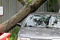 Znojemští hasiči odstraňovali strom, který spadl na auto v Lužické ulici.
