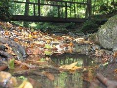 Gránický potok je jedním z malých toků, který napájí Dyji pod Znojmem. V těchto dnech je téměř bez vody.