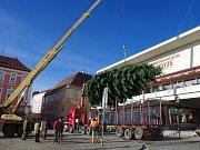 Masarykovo náměstí ve Znojmě ozdobil ve středu dvanáctimetrový vánoční strom. Adventní trhy a program začnou třetího prosince.