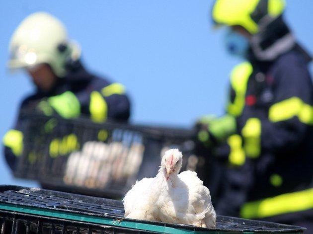 Ve čtvrtek před polednem havaroval na silnici třetí třídy číslo 399 mezi Plavčí a Stupešicemi kamion naložený kuřaty.