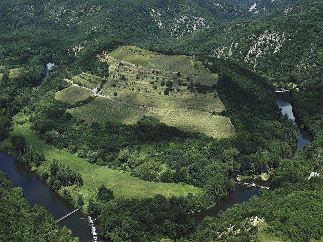 Známá vinice Šobes vNárodním parku Podyjí.