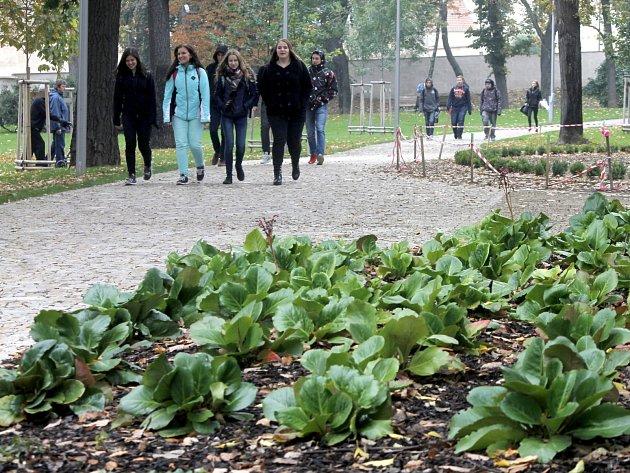 Okolí kašny v Dolním parku ve Znojmě má novou parkovou úpravu. Některé rostliny ještě v polovině října kvetou.