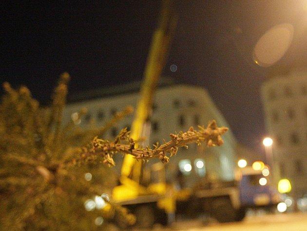 Vánoční strom zmizel z náměstí Svobody