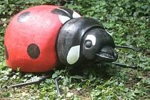 Nové hmyzí přírůstky doplňují naučnou stezku v Gránicích.