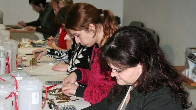 Pracovníci Charity Znojmo začínají počítat výtěžek Tříkrálové sbírky.