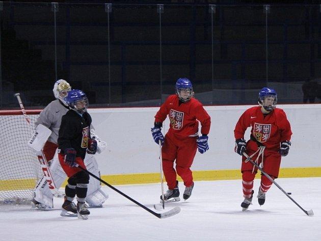 Ve Znojmě v těchto dnech trénuje národní ženská hokejová reprezentace.