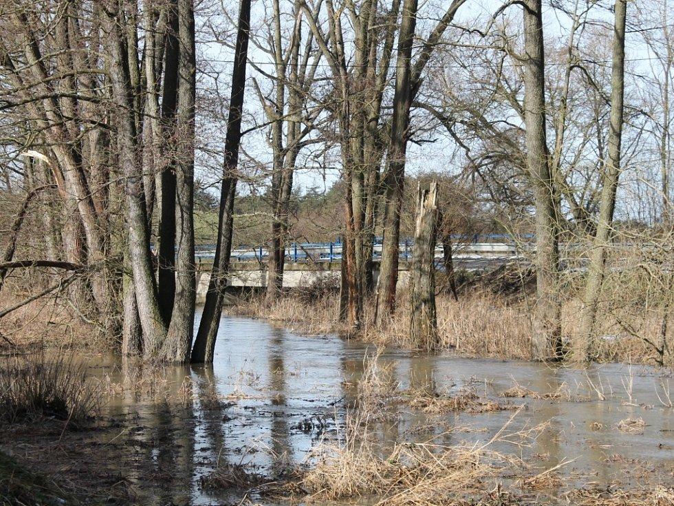 Obleva rozvodnila potok Blatnice v Korolupech. Při povodních v roce 2006 se voda z něj dostala i do objektů v jeho blízkosti.