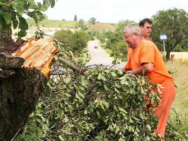 Desítky polámaných ovocných stromků odklízeli pracovníci správy silnic také u cesty ze Znojma do Únanova.