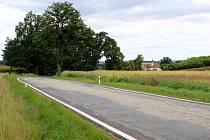 U silnice z Hostimi do Rozkoše vysadí vedení obce společně s místními lidmi padesát ovocných stromků.