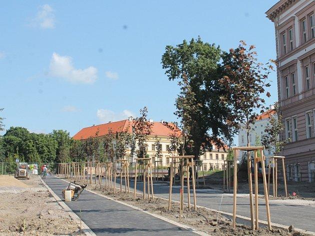 Znojemská radnice nechala v sobotu 6. července 2013 vyměnit uschlé stromy ve střední části parku.