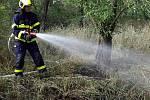Kolem šesté hodiny večer hořelo v lese u Dobšic.