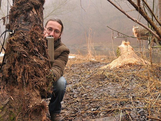 Ochranáři ze Správy Národního parku Podyjí poprvé vyfotografovali přímo v parku bobra evropského. Použili takzvané fotopasti.