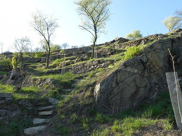 Správci parku Podyjí ocenili Marka Tejrala za péči o hradišťské terasy.