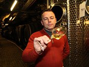 Osmašedesátiletý vinař Jaroslav Fišer preferuje červená vína, především Cabernet Moravia. Ve sklepě ale má i padesát let staré víno.