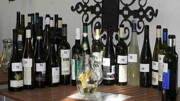 Výstava a ochutnávka vín ve Znojmě.
