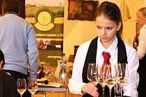 Úterní dopoledne patřilo v sále obrazové galerie Louckého kláštera hodnocení vín přihlášených do systému VOC Znojmo. Prošlo šestnáct sauvignonů, jedenáct ryzlinků, šest veltlínů a jedno cuvée z odrůd Veltlínské zelené a Ryzlink rýnský.